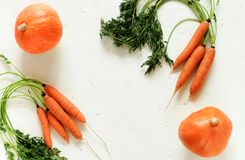 Fresh pampkin and carrot on white vintage background. stock images