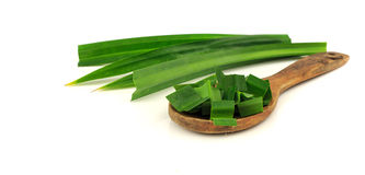 Fresh pandan leaves on white background Royalty Free Stock Images