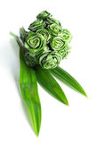 Fresh Pandanus leaf weave to rose bouquet Stock Photography