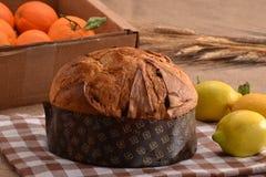 Fresh panetone. Royalty Free Stock Images