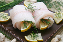 Fresh Pangasius Fish Stock Image
