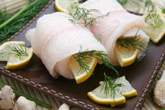 Fresh Pangasius Fish Stock Photography