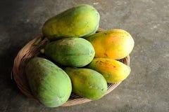 Fresh Papaya Stock Photography