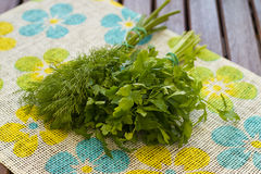 Fresh parcely and dill stock images