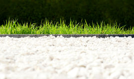 Fresh park lawn. Fresh grass in the park with a stony path in the foreground stock photo