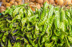 The fresh Parkia is tropical stinking edible beans, Thai style t Royalty Free Stock Images