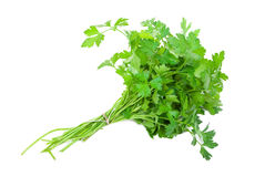 Fresh parsley. On white background Royalty Free Stock Images