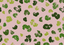 Fresh parsley arranged in a pattern, Vector Illustration royalty free stock photography