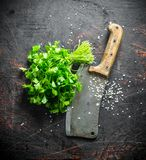 Fresh parsley with big knife. On dark rustic background stock image