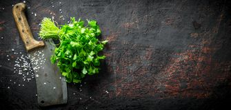 Fresh parsley with big knife. On dark rustic background royalty free stock photography
