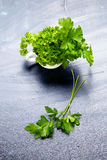 Fresh parsley in bowl on rustic wooden background Stock Images