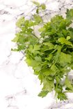 Fresh parsley bunch. Top view Royalty Free Stock Photo