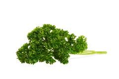 Fresh parsley. Close-up. Variant two. Fresh parsley. Close-up. Object over white. Variant two Royalty Free Stock Photos