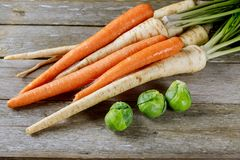 Fresh parsley, dill and first carrots on the kitchen table. Fresh Parsley Carrot Dill Stock Photos