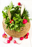 Fresh parsley, dill and radish in a wicker basket on white woode. Fresh vegetables in a bowl wicker basket on white wooden background Royalty Free Stock Photography