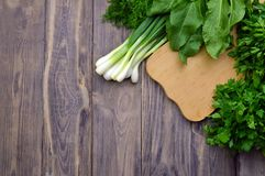 Fresh greens on a cutting board. Top view. Food background. Cook. Fresh parsley , dill, spinach, sorrel, green onion on a cutting board and a knife. cooking stock image