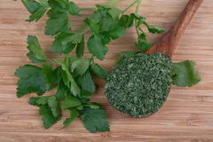 Fresh parsley and dry Royalty Free Stock Photography