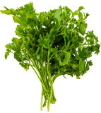 Fresh parsley Stock Photos