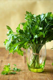 Fresh parsley in a green glass Stock Photos