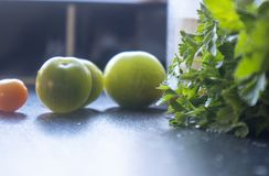 Fresh parsley with green tomatoes. Fresh Parsley on a black kitchen worktop, next to 1 red and 3 green tomatoes royalty free stock photography