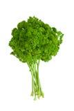 Fresh parsley Royalty Free Stock Photos
