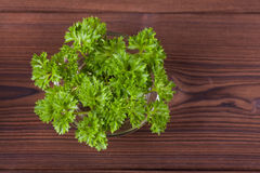 Fresh parsley. Green parsley on wood background stock photography