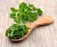 Fresh parsley herbs Royalty Free Stock Images
