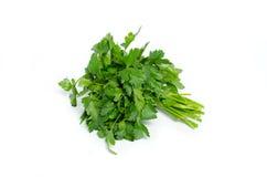 Fresh parsley isolated on white background Stock Image