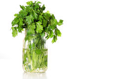 Fresh parsley in a jar of water. Shot of a fresh parsley in a jar of water Stock Photos