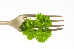 Fresh parsley leaves stock photos
