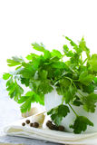 Fresh parsley in a marble mortar Stock Photos