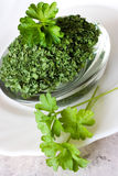 Fresh Parsley / Petroselinum crispum Royalty Free Stock Photo