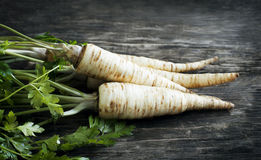 Fresh parsley root on wooden background. Stock Photos