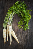 Fresh parsley root on wooden background Stock Photography