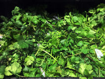 Fresh Parsley. Waiting to sold in a supermarket Royalty Free Stock Image