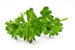Fresh parsley  on a white Stock Image