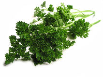 Fresh parsley on white background Royalty Free Stock Photos