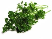 Fresh parsley on white background Royalty Free Stock Photos