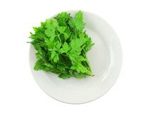 Fresh parsley on white background. Isolated Royalty Free Stock Photos