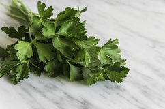 Fresh parsley on white stone background Stock Photography