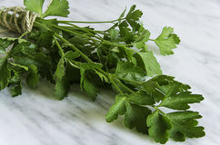 Fresh parsley on a  white stone background Stock Photo