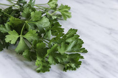 Fresh parsley on white stone background Royalty Free Stock Image