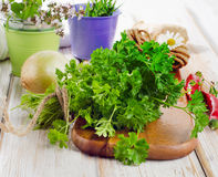 Fresh parsley Stock Photos