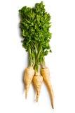 Fresh parsnip Stock Photo