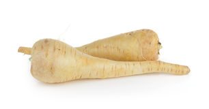 Fresh parsnip roots on  white background Royalty Free Stock Photography