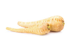 Fresh parsnip roots on a white background Royalty Free Stock Image