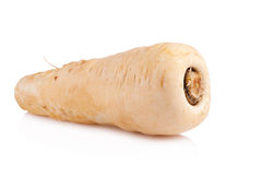 Fresh parsnip roots on a white background Stock Photo