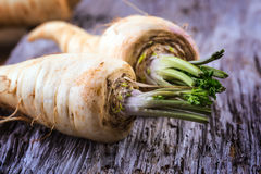 Fresh parsnips on old wooden table. Royalty Free Stock Photo