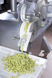 The fresh pasta industry. Automated food factoy make excellent fresh pasta Royalty Free Stock Photography