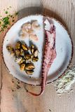 Fresh pasta ingredients. Sea food details for pasta in the making Royalty Free Stock Image